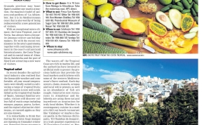 DESTINATION MARKETING SPAIN CULTURE HOLIDAYS ANDREW FORBES