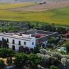 Hacienda De San Rafael Andrew Forbes Andalucia Diary 9