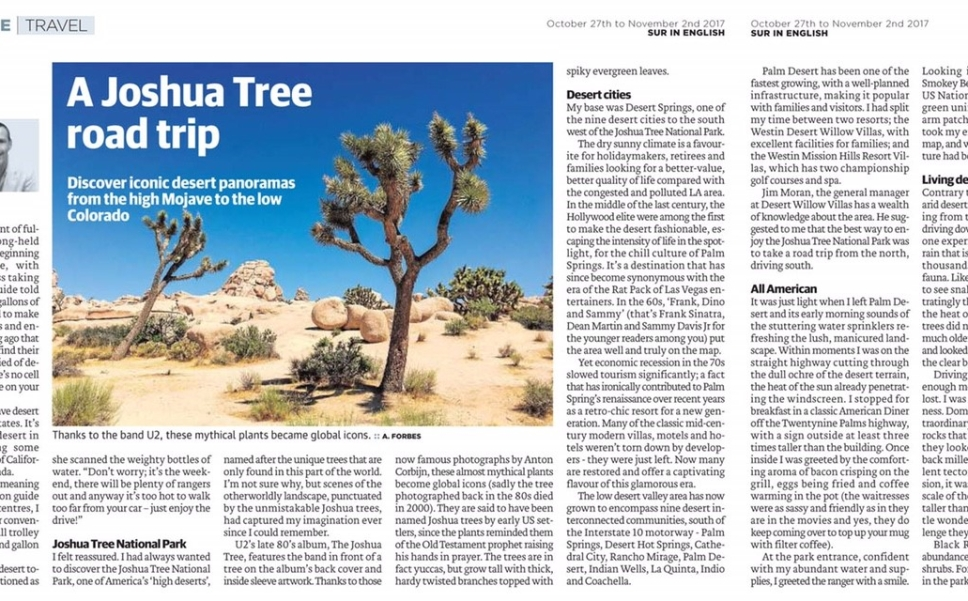 Joshua Tree Feature Masthead
