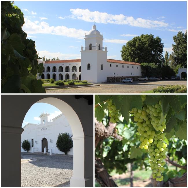 Esteco Winery Bodega Cafayate Salta Argentina Andrew Forbes