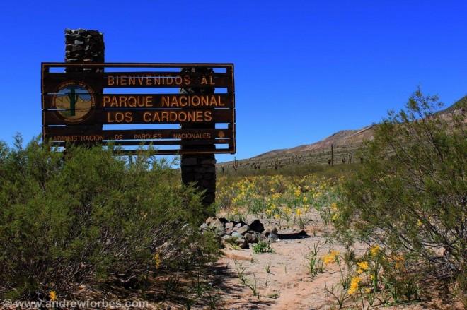 Argentinas National Cardones Cactus Park Salta Province