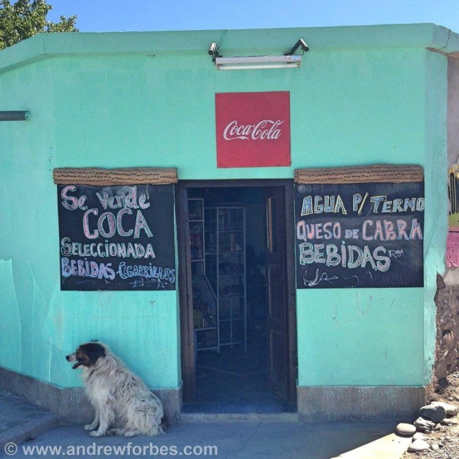 Coca for sale on the road to Salta from Cachi
