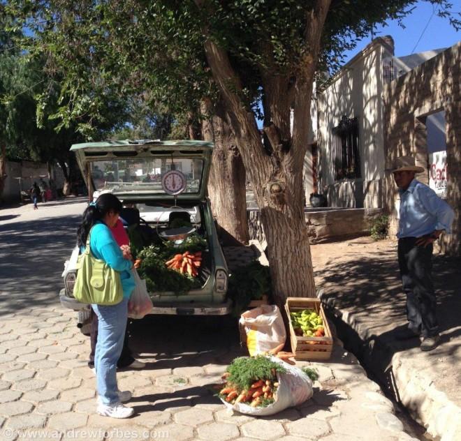 street vendor cachi
