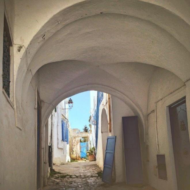 Tunisia, Tunis, Sidi Bou Said, Cathage MSC Splendida Andrew Forbes (6)