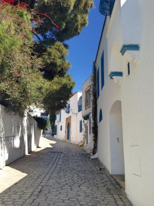 Tunisia, Tunis, Sidi Bou Said, Cathage MSC Splendida Andrew Forbes (8)