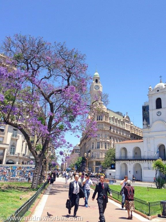 Buenos Aires, Argentina, Travel, Andrew Forbes (4)