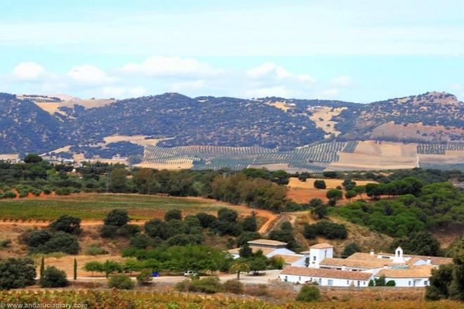 Cortijo de los Aguilares Ronda Andalucia Diary  (5)