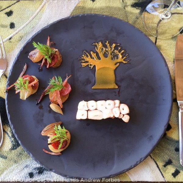 EAT La Motte (otocpus terrine)