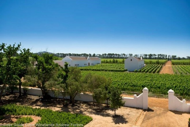 MAIN PIC Babylonstoren - Vineyards