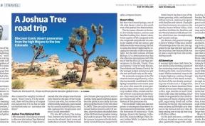 Joshua Tree Feature Masthead